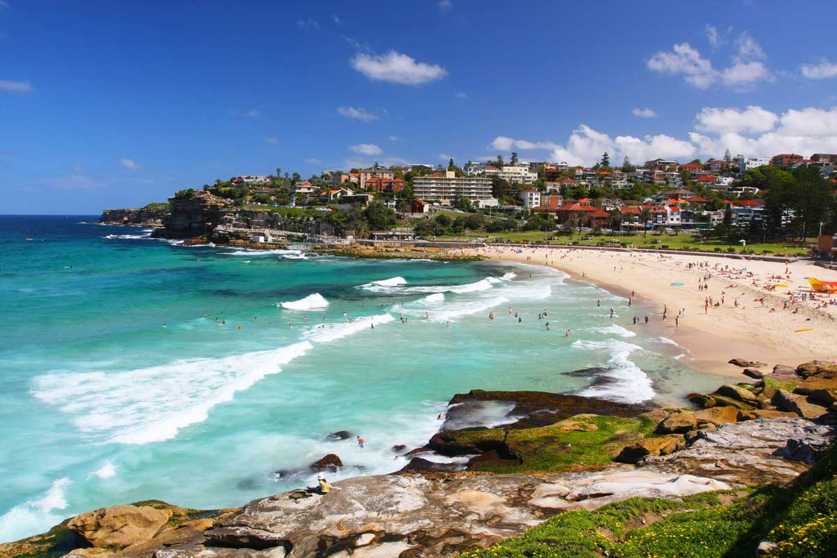 Experience Australian beach life on a private tour of Sydney